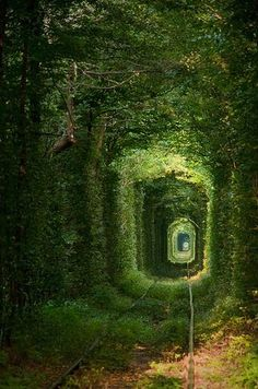 The Secret Garden... #Ukraine