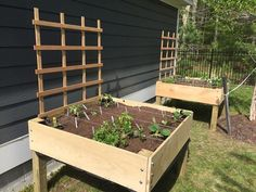 Ana White | Counter height 4'x4' square footage gardening planter boxes - DIY Projects #veggiegardens