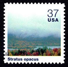 37c Stratus Opacus single