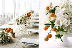 air plants, kumquats and spring blooms.   Mckenzie powell