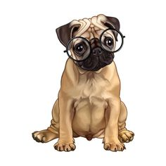 Designer Clothes, Shoes & Bags for Women Custom Dog Portraits, Pet Portraits, Pug Wallpaper, Dibujos Zentangle Art, Baby Animals, Cute Animals, Baby Pugs, Pug Art, Cute Dogs And Puppies