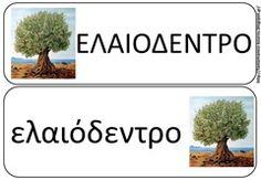 ελ13 Learn Greek, Greek Language, Olive Tree, How To Stay Motivated, Learning, Outdoor Decor, Autumn, Fall Season, Greek