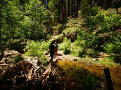Hiking In Sedona, Arizona Visit Sedona, Sedona Arizona, Hiking, Fork, Vacation, Places, Travel, Outdoor, Walks