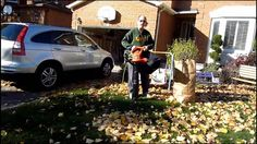 Arnie Deltoff shows how to pick up leaves without raking using the Black and Decker leaf blower and vacuum. Educational Videos, Leaf Blower, Toronto, Plants, Garden, Garten, Planters, Gardening, Outdoor