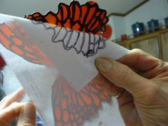 gelatin and royal icing butterfly