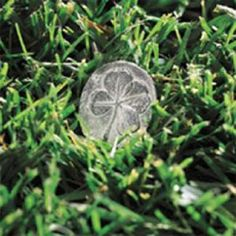 Four Leaf Clover Token - 50 pcs, these will be our favors :)