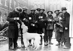 Credit: Imperial war Museum London firemen with their poodle mascot outside Guildhall in London, 1940 The Guardian