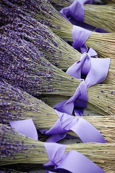 Freshly cut French Lavender - one of the soft fragrance notes in Aesthetic Content's Lavender Pera Bianca Luxury Scented Soy Candle