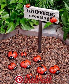 Use this ladybug garden decor to create an enchanting scene in your .Create an enchanting scene in your garden with this ladybug garden decor. - Diy garden Amazing Ideas Country Garden Decor 72 95 Best Charmingly Rustic Images On Pin .