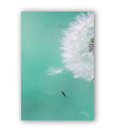 photographie fine art d'une graine de pissenlit - dandelion art photography : Photos par couleurs-nature-deco