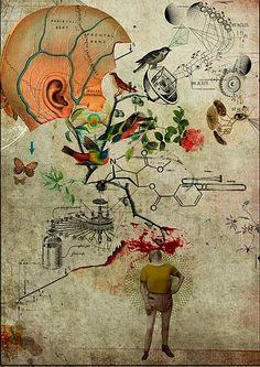 portifolio   Art 2 by Diego Max