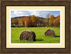 Hay Bales And Fall Colors by Christina Rollo © www.rollosphotos.com. Colorful fall foliage against blue sky with clouds on a bright sunny day, behind tightly wound bales of hay on a lush green country field. #NewYork #landscape #rollosphotos #fineart