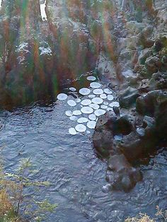 Supernatural Ice Circles: What Cause Them? - If you look at this phenomenon called Ice Circle, you will be puzzled by its appearance. They are perfectly round ice slabs that swirl slowly in rivers in cold climes.