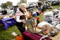 Local hostess get to show of their best silver at Mooreland Farms tailgate party - Google Search