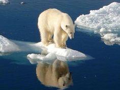 Hay que cuidar a nuestro planeta #naturaleza