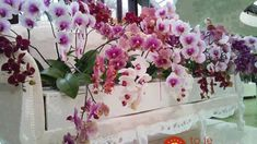 Beautiful floral arrangement and bench Types Of Flowers, Diy Flowers, Blue Flowers, Exotic Flowers, Amazing Flowers, Orchid Planters, Lily Garden, Orchidaceae, Garden Styles