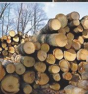 Hardwood Lumber at Lapp Lumber Co Lancaster County PA