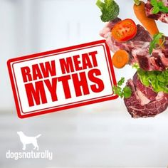 Feeding a raw diet brings with it A LOT of misinformation …  For example: ✖️ Feeding raw meat puts your dog at risk of salmonella ✖️ A raw diet will make your dog aggressive ✖️ It's dangerous to give your dog bones ✖️ Raw diets aren't suitable for small/toy breeds  We addressed the top 7 myths of raw feeding, and why you really have nothing to worry about: