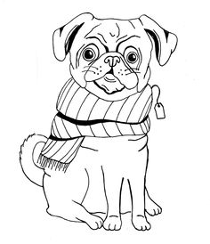 Pug illustration - Memoli Ward - Line drawing