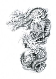 Dragon Tattoo Art, Small Dragon Tattoos, Dragon Sleeve Tattoos, Japanese Dragon Tattoos, Japanese Tattoo Art, Japanese Tattoo Designs, Dragon Tattoo Designs, Skull Tattoos, Dragon Art
