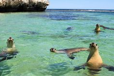 Jurien Bay, Western Australia.