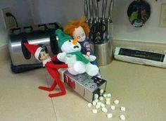 Make Your Own Marshmallows #DIY #food #chucky #fun #entertainment #xmas #snow #winter #lol http://bbzee.me/p18673