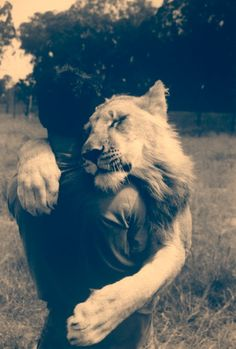 #lion #human #friend
