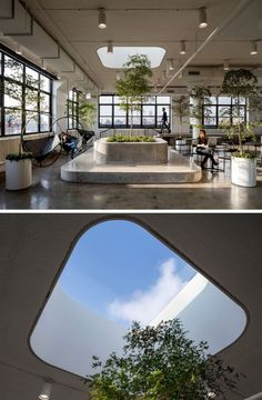 Touches of nature, like trees, have been added to this office space to soften up the hardness of the concrete.