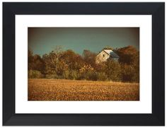 """11"""" x 14"""" Traditional Photography Prints / Wall Décor Landscape Photograph: Abandoned Barn In The Trees - Colorized . View all of the stunning Landscape Photos by Nature and Landscape Photographer Melissa Fague at:  https://www.etsy.com/shop/PIPAFineart Limited Edition Fine Art landscape photography prints and canvas wraps are also available in a variety of sizes."""