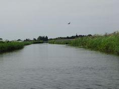 Oosterdel Natuurgebied Broek op Langedijk