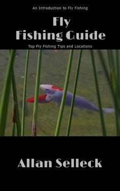 Fly Fishing Basics - How to Catch Fish with Flies