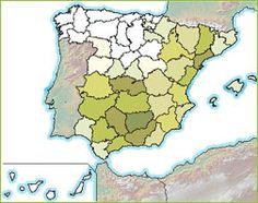 mapa del aceite de oliva