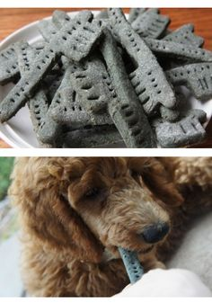 """Make """"Greenies"""" for your dogs - Dog treats that help your pets teeth. Add a tsp of bentonite clay to the dough to help keep pets parasite-free. Get clay at http://www.earthsnaturalclay.com/"""