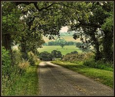 Down the Lane by JHHALL2010., via Flickr