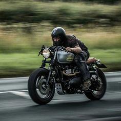 Image result for triumph bonneville t100 cafe racer ideas