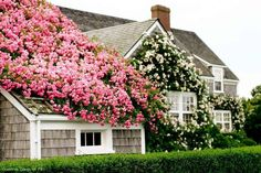 Love the look of the Hamptons exterior. Exterior Design, Interior And Exterior, Beautiful Gardens, Beautiful Homes, Nantucket Island, Nantucket Cottage, Nantucket Style, Nantucket Baskets, Beach Cottages