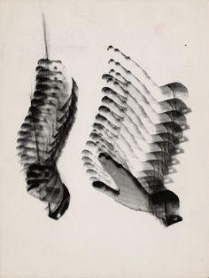 """Wojciech Zamecznik, studium do projektu plakatu """"Muzyka polska"""", 1963 © J. i S. Zamecznik / Fundacja Archeologia Fotografii #zamecznik #muzyka #plakat #szkic #poster #music"""