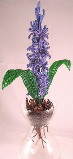 French Beaded Hyacinth | Flickr - Photo Sharing!