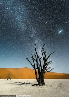 Deadvlei at night - Photography by Dima Chatrov dimachatrov.com There are plenty of images of De