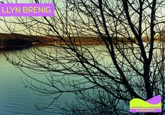 Llyn Brenig is the fourth largest lake in Wales, located in the heart of the Denbigh Moors