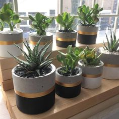 Cylinder Concrete Planter Handmade Round Succulent Pots Small and Large Indoor Cement Pot Industrial Chic Decor red haired shanks - Red Hair Concrete Crafts, Concrete Planters, Planter Pots, Wall Planters, Planter Ideas, Succulent Pots, Cacti And Succulents, Cactus Plants, Decoration Cactus