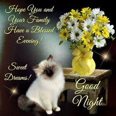 Good Night, God bless.