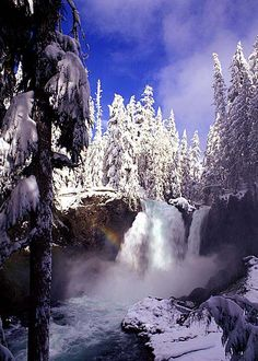 Sahali Falls, Willamette Natl Forest, Oregon.