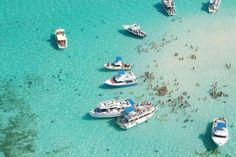 Seven Miles Beach Grand Cayman.  Swim with the stingrays