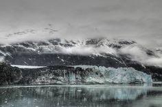 Green amidst B Glacier Bay National Park, Alaska