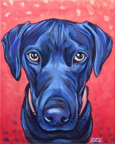 Black Labrador Retriever by Bethany.
