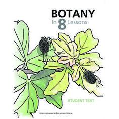 Botany study - Ellen