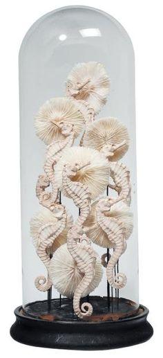 Lot n°391  Composition de coraux et d'hippocampes en plâtre, sous un globe. H_51 cm