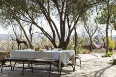 Here you will be amazed at our bush accommodation. Time Stood Still, Outdoor Furniture Sets, Outdoor Decor, Safari, The Incredibles, Patio, Luxury, Green, Home