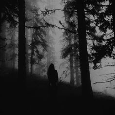 Dark forest, glow of the lake, an eternal dance of death — photography by Ana Markovic and Mirjana Grasser (. Misty Forest, Dark Forest, Magical Forest, Final Fantasy Artwork, Yennefer Of Vengerberg, Dance Of Death, Roman, Horror, Dark Thoughts